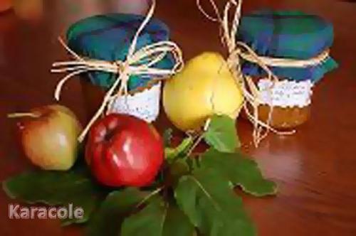 Confitures de Babou coing, pommes, vanille  Récréation culinaire